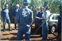 ESTEIO staff in a Pipeline survey