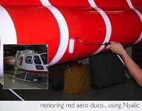 protection Aircraft paint - Nyalic